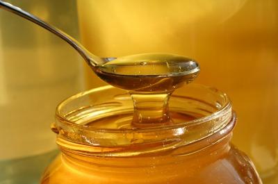 honey 322