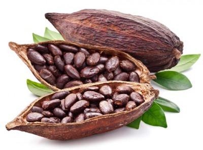 cocoa big